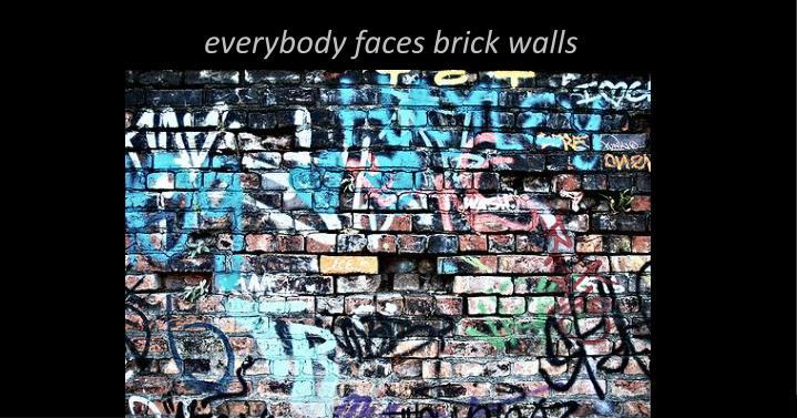 everybody faces brick walls