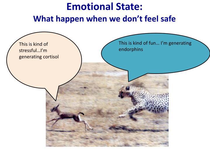 Emotional State: