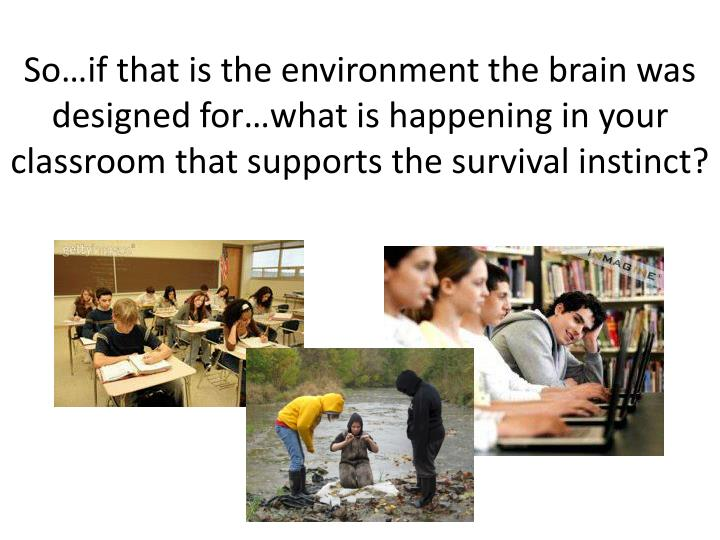 So…if that is the environment the brain was designed for…what is happening in your classroom that supports the survival instinct?