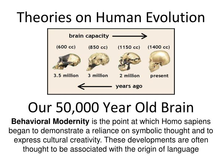 Theories on Human Evolution