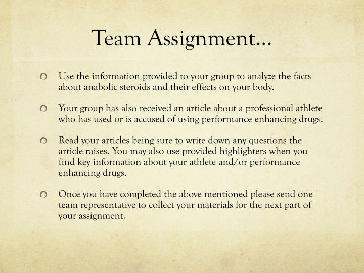 Team Assignment…