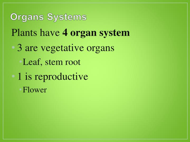 Organs systems