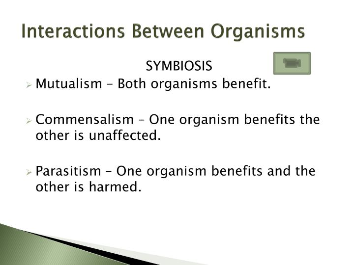 Interactions Between Organisms