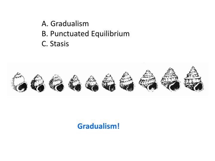 A. Gradualism