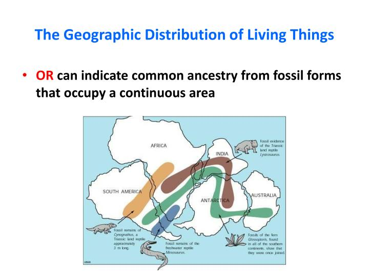 The Geographic Distribution of Living Things