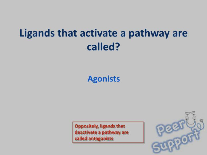 Ligands that activate a pathway are called1