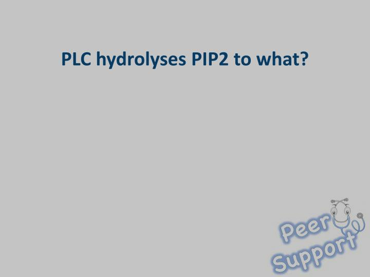 PLC hydrolyses PIP2 to what?