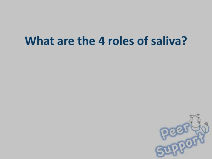 What are the 4 roles of saliva?