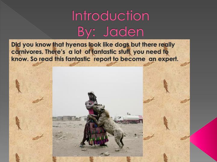 Introduction by jaden
