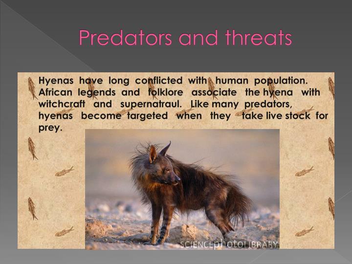 Predators and threats