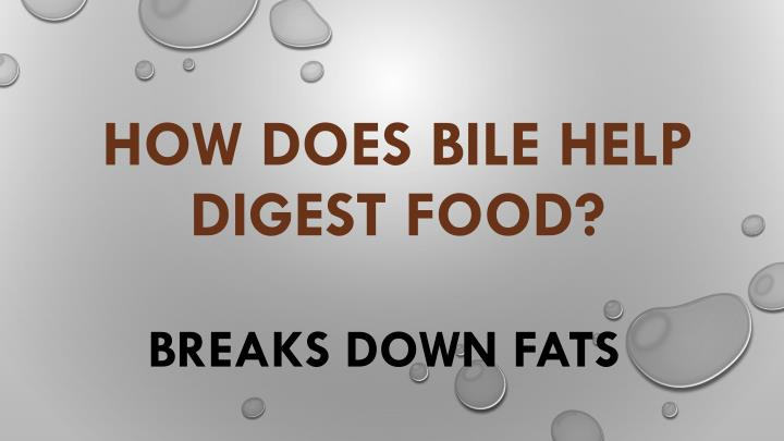 How does bile help digest food?