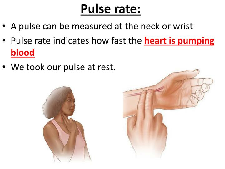 Pulse rate: