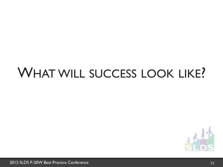 What will success look like?