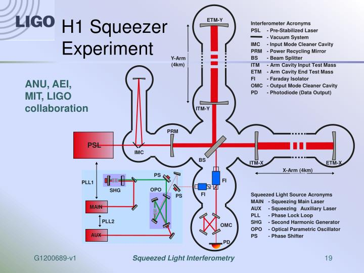 H1 Squeezer Experiment
