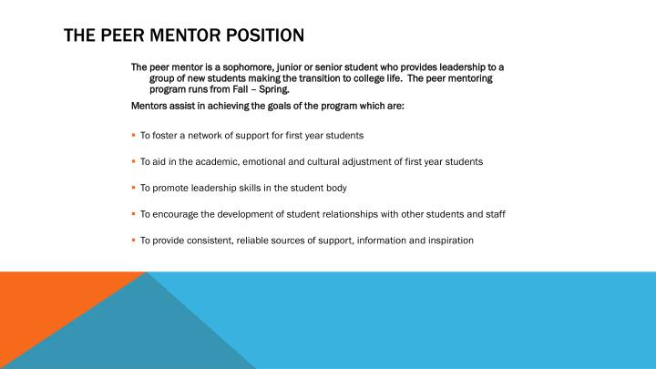 The Peer Mentor Position