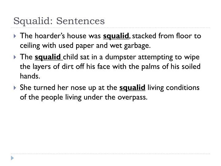 Squalid: Sentences