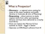 what is prospector