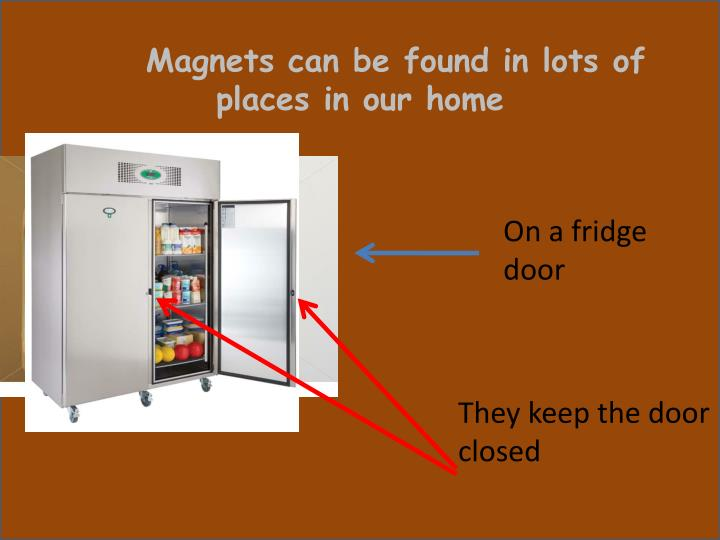 Magnets can be found in lots of places in our home