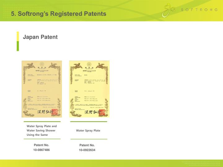 5. Softrong's Registered Patents