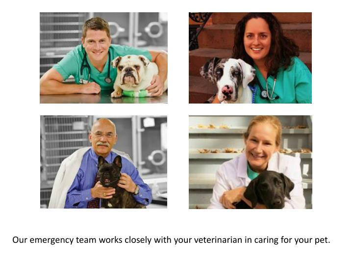 Our emergency team works closely with your veterinarian in caring for your pet.