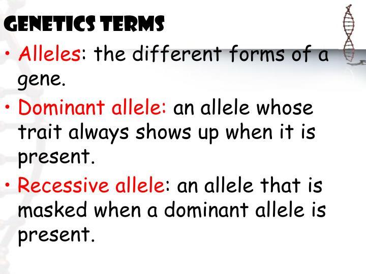 Genetics Terms