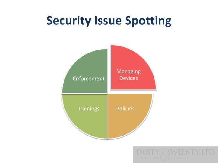 Security Issue Spotting