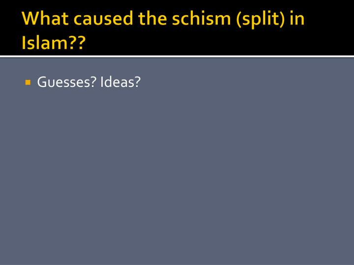 What caused the schism (split) in Islam??