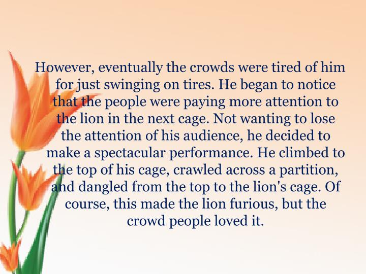 However, eventually the crowds were tired of him for just swinging on tires. He began to notice that the people were paying more attention to the lion in the next cage. Not wanting to lose the attention of his audience, he decided to make a spectacular performance. He climbed to the top of his cage, crawled across a partition, and dangled from the top to the lion's cage. Of course, this made the lion furious, but the crowd people loved it.