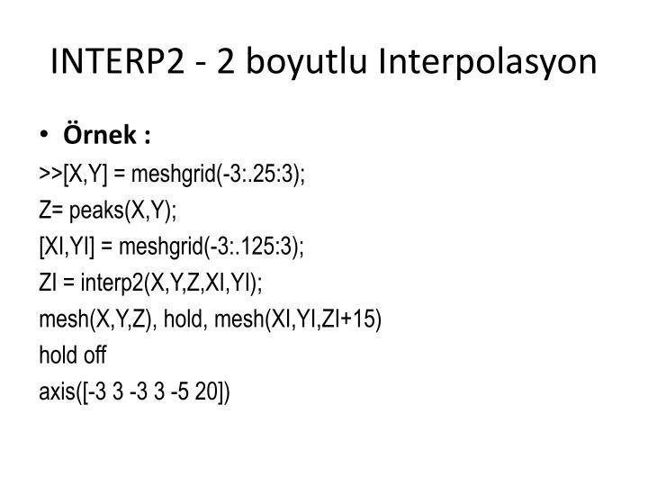 INTERP2 - 2 boyutlu