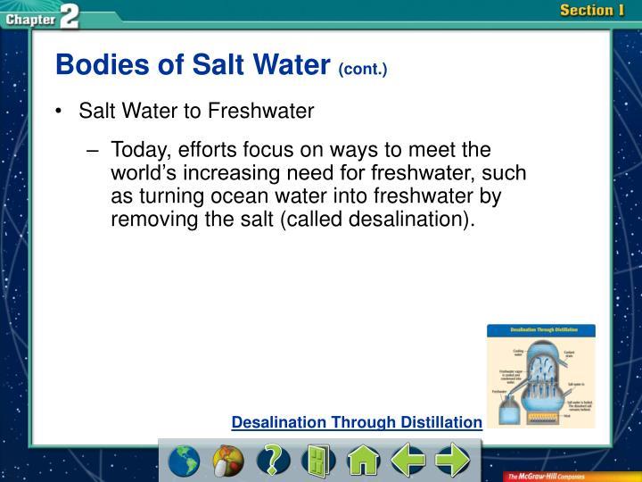 Bodies of Salt Water