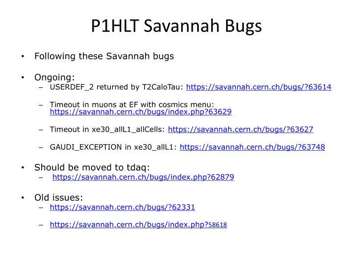 P1HLT Savannah Bugs