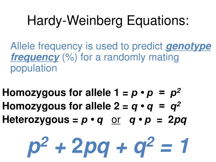 Hardy-Weinberg Equations: