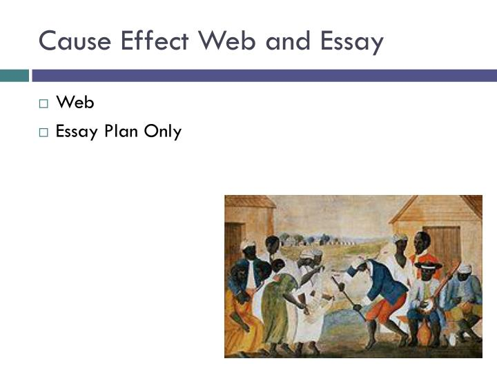 Cause Effect Web and Essay