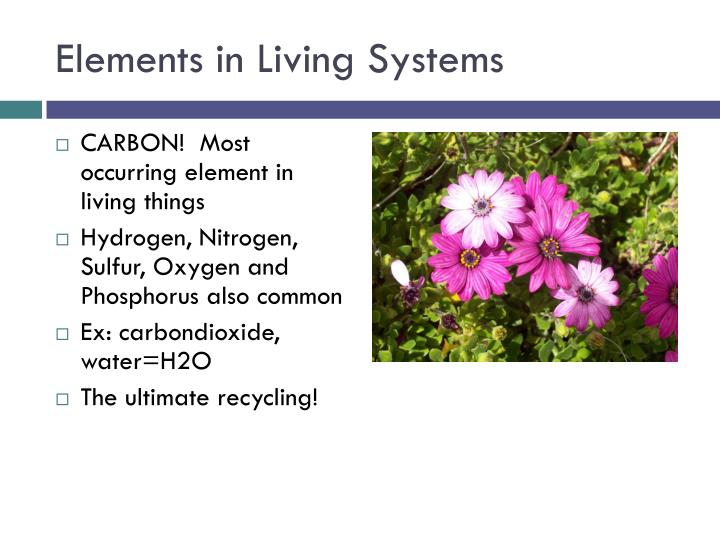 Elements in Living Systems