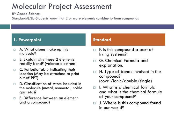 Molecular Project Assessment