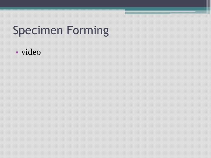 Specimen Forming