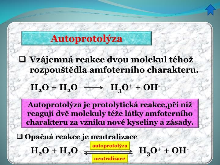 Autoprotolýza