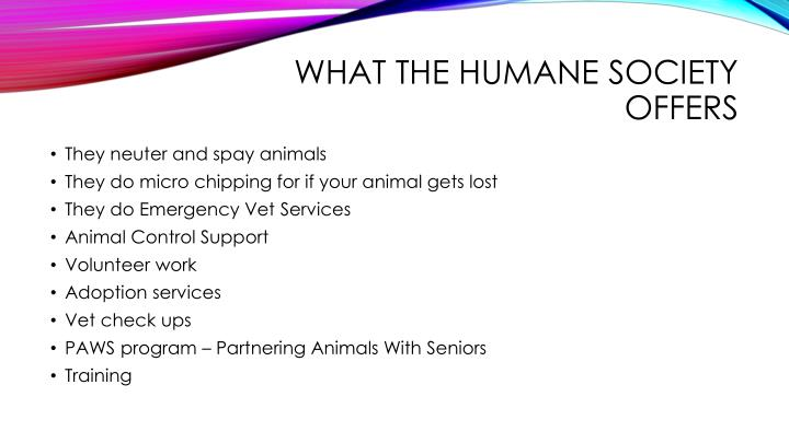 What the humane society offers