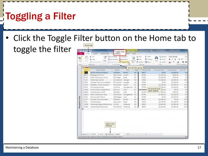 Toggling a Filter