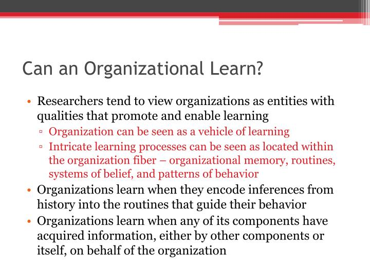 Can an Organizational Learn?