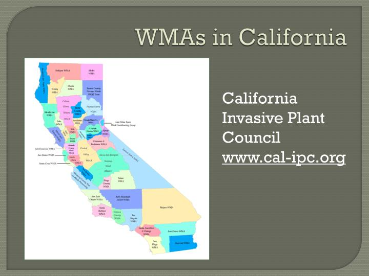 WMAs in California
