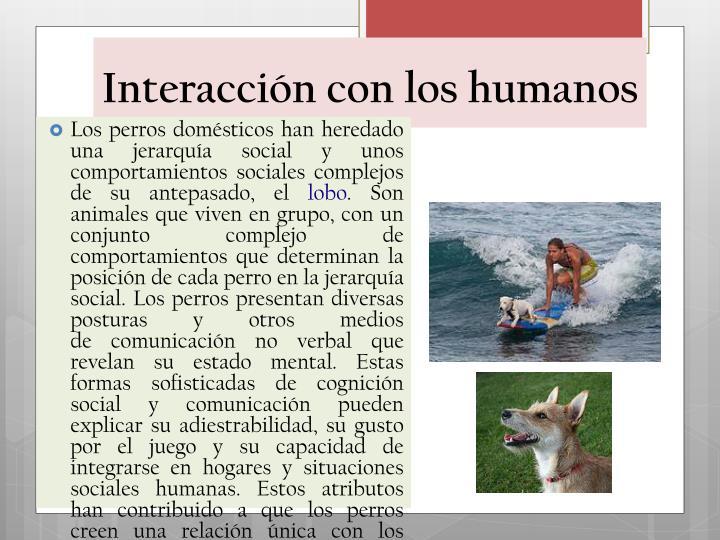 Interacción con los humanos