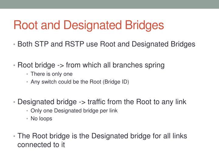 Root and Designated Bridges