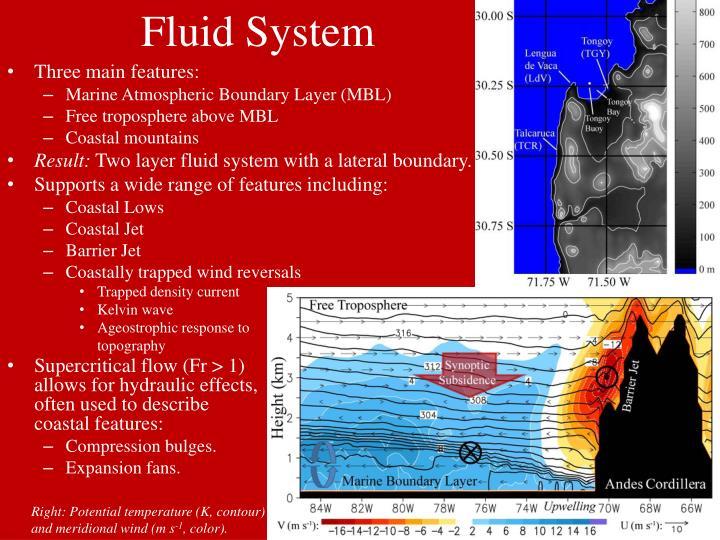 Fluid System