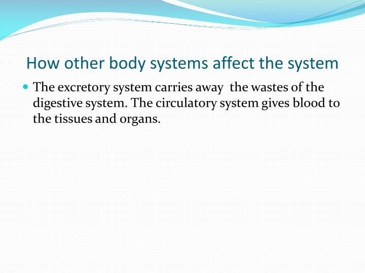 How other body systems affect the system