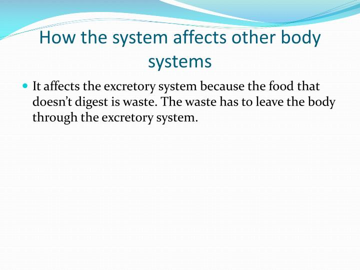 How the system affects other body systems