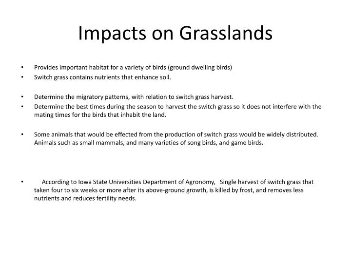 Impacts on grasslands