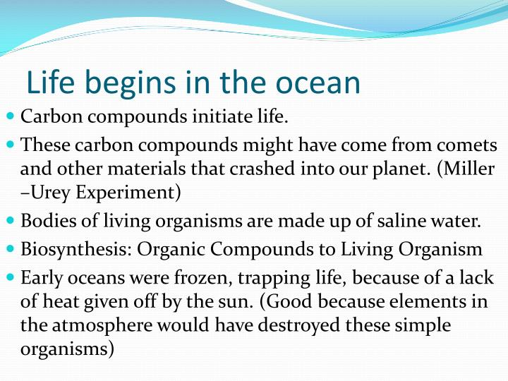 Life begins in the ocean