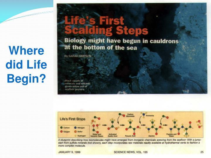 Where did Life Begin?