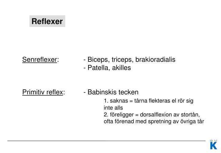 ppt neurologstatus powerpoint presentation id2528552